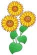Detaily fotografie Tři roztomilé slunečnice