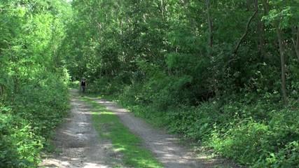 Randonnée en forêt (femme)