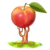 origine della mela