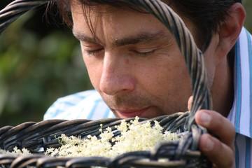 Mann schnuppert am frisch geernteten Holunder