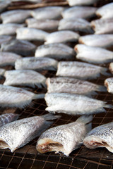 gourami is dry out in fresh-food market