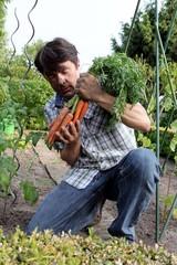 Mann hält frisch geerntete Mohrrüben