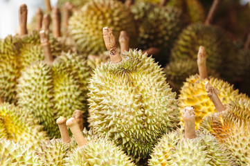 Durians at market