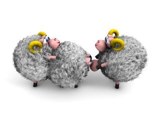 Pecore e sesso 4