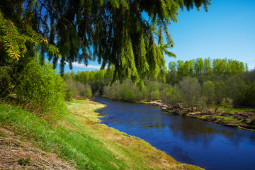 Blue river, at spring time.