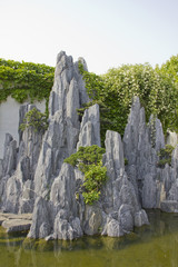 Rocks in a Asian garden