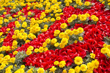 Red and yellow flowers in a garden