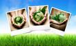 écologie planète terre mains