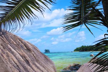 palmes et rochers aux Seychelles, anse Source d'Argent
