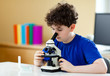 Boy examining preparation under the microscope