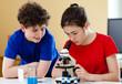 Kids examining preparation under the microscope
