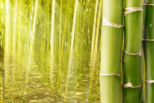 azjatyckie-srodowisko-z-bambusowymi-laskami