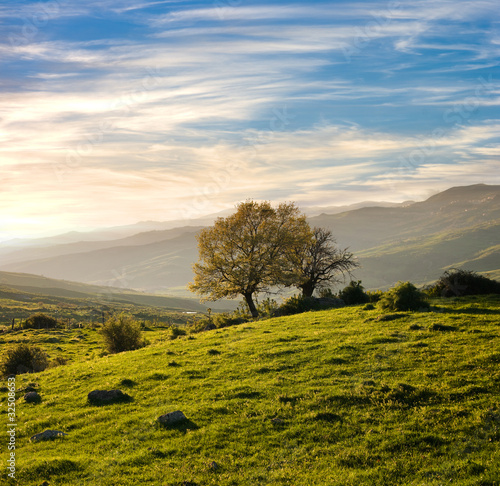 Country Landscape In A Spring Sunset