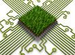 Green Chip 01