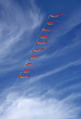 Array of beautful kites in the sky