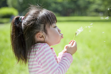 綿毛を飛ばす子供