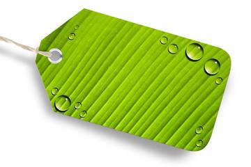 Grüner Öko-Button, blank