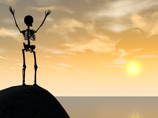 Skeleton climber on top of rock