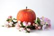 Apfel mit Blüten