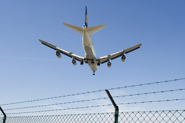 landendes Flugzeug (nur redaktionell)