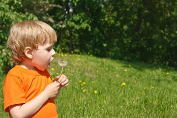 Boy blowing dandelion