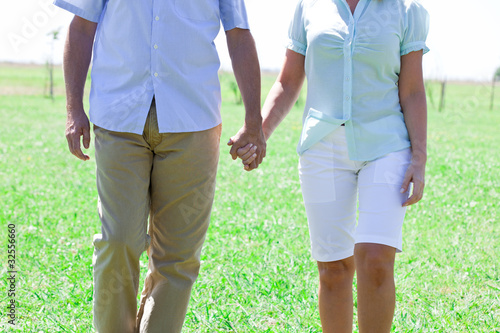 Couple walking hand in hand in meadow