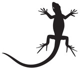 Lizard silhouette for your design
