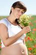 natürliche schwangerschaft kamillenblüten