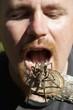 man pretending to eat a tarantula; manica, mozambique, africa