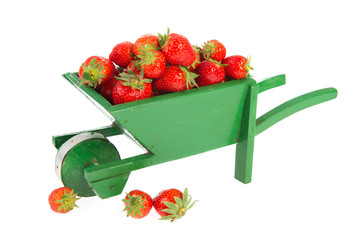 Wheelbarrow with strawberries