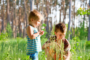 Brothers outdoors in dandelions