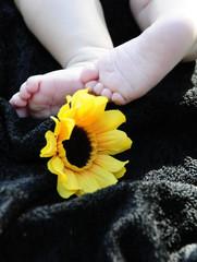 Babyfüsse mit Sonnenblume