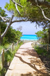 beach way to Illetas paradise beach Formentera