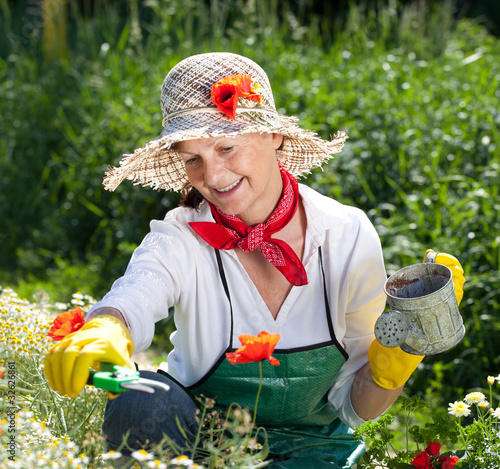 a mature woman picking fresh herbs from her garden