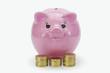 Sparschwein mit Geldstapel