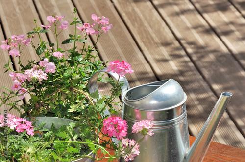 verveine rose et arrosoir sur terrasse en bois