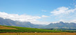 panoramic landscape with vineyard(South Africa)