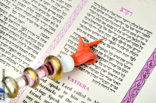 Yad Pointing at Text in a Torah