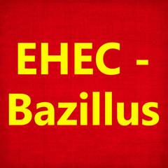 Ehec, Enterohämorrhagische Escherichia coli,