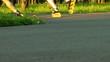 HD - Roller Skates