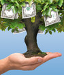 Euro tree 2