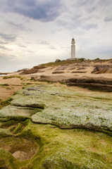 Lightouse & Green Rocks
