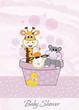 animal baby shower r