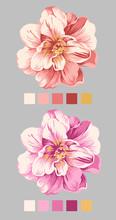 handritad blomma 04