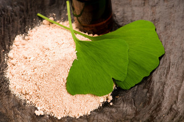 fresh leaves ginko biloba essential oil and powder