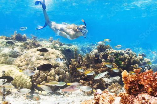 Diver - 32681868