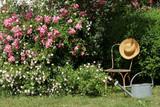 Rosengarten mit großem Buchsbaum