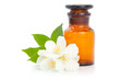 Aromatherapy. Jasmine with bottle isolated on white