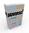 Success - A Product Box Offers Instant Self Improvement