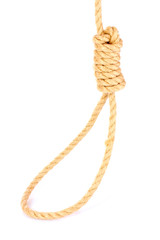 Suicide Noose isolated on white